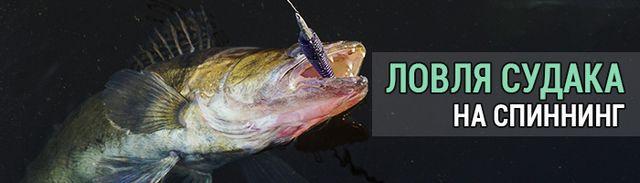 Ловля судака летом - читайте на Сatcher.fish